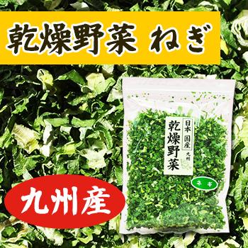 画像1: 乾燥野菜 国産 九州産 ねぎ 30g (1)